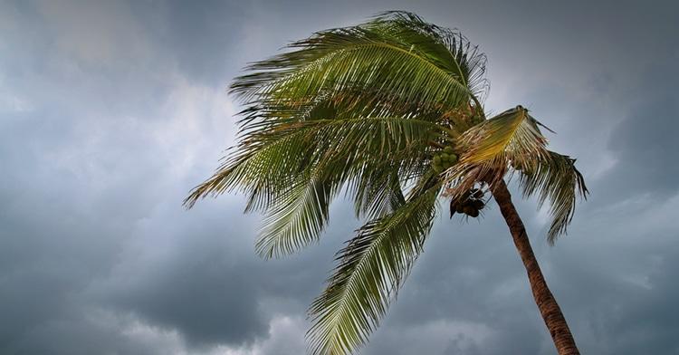 florida-hurricane-preparation