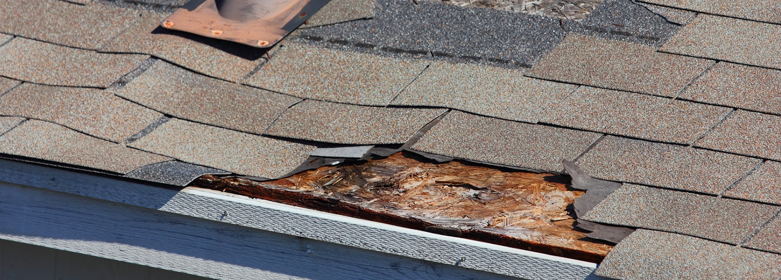 Roof Repair in Gainesville, FL