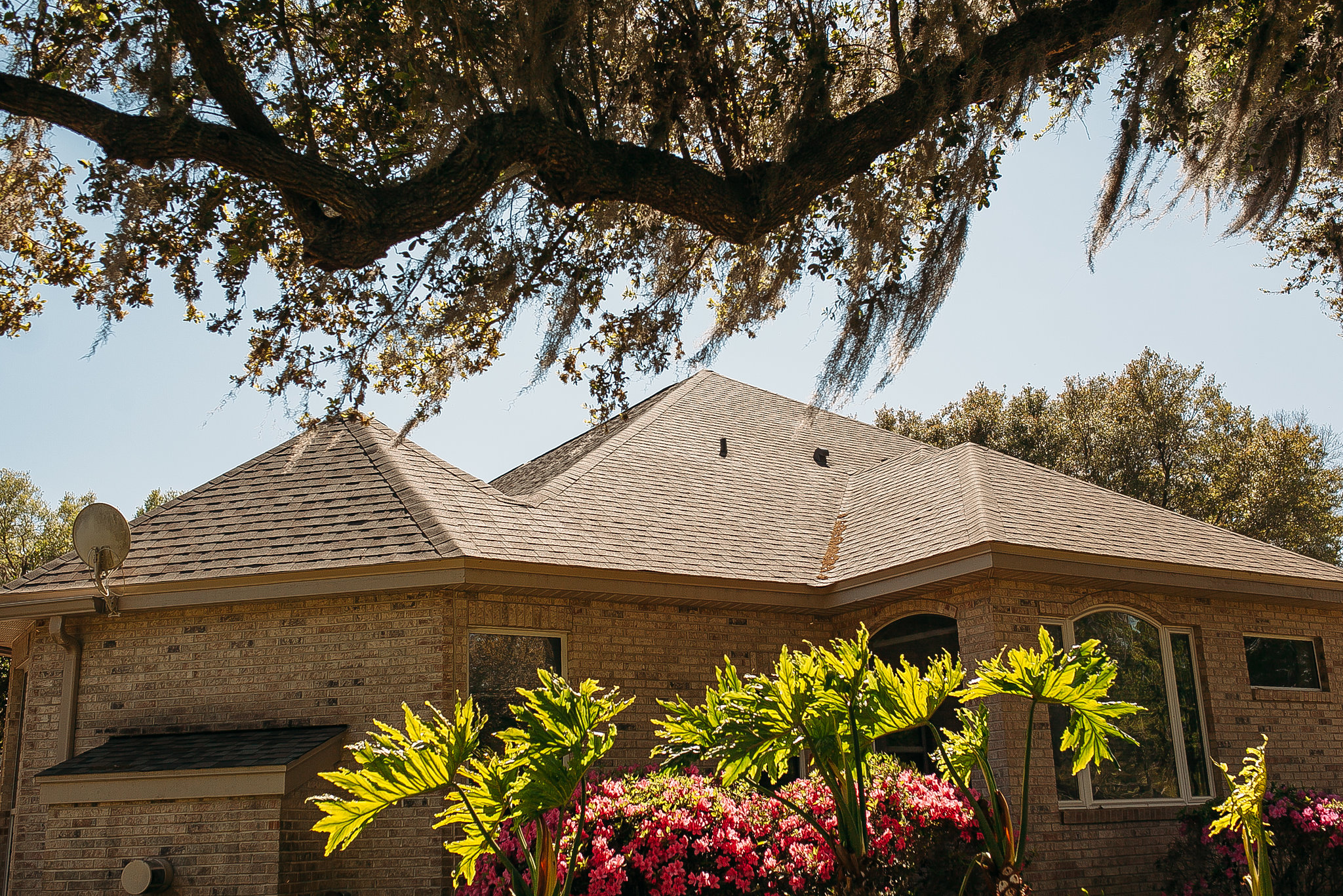 florida home with beige asphalt shingles